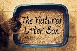 Натуральный наполнитель для кошачьего туалета