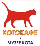 """Кото-кафе в """"Музее кота"""""""